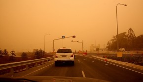 Safety Tips for Surviving a Dust Storm While Driving